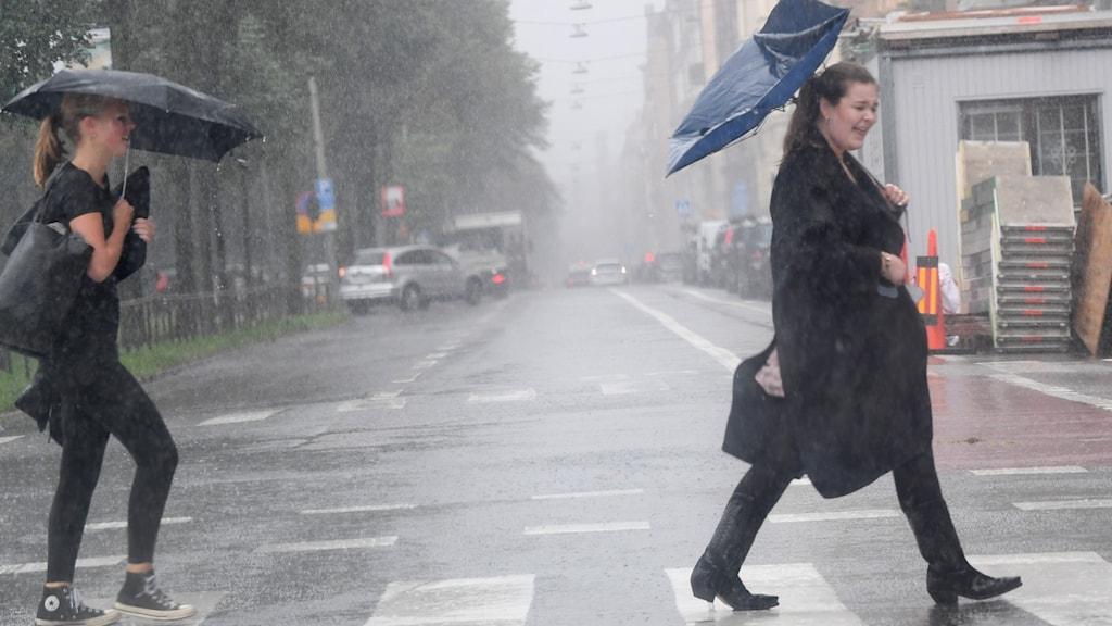 Personer med paraply i regnet på ett övergångställe