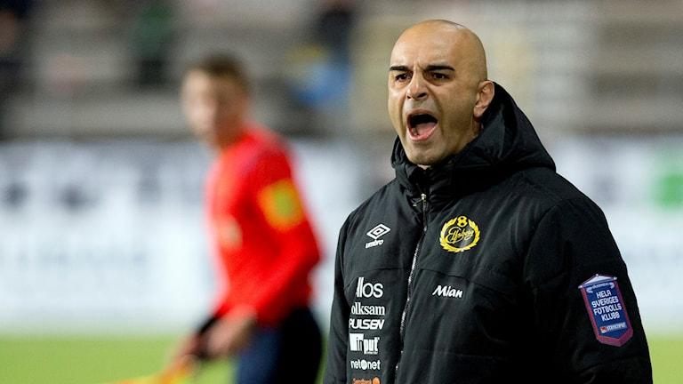 Janne Mian tränare i Elfsborg skriker från sidlinjen.