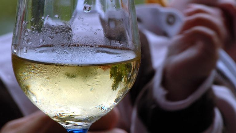 Ett glas vitt vin syns i förgrunden, ett barns arm syns i bakgrunden.