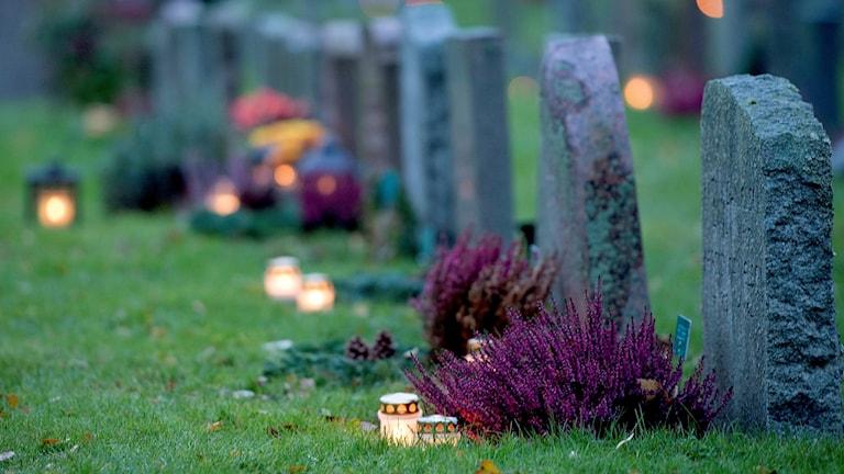 Gravstenar med ljus och blommor.
