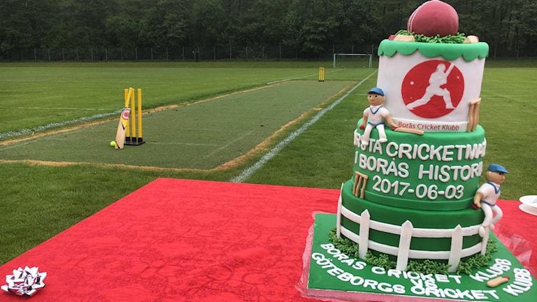 Grön tårta framför en cricketplan.