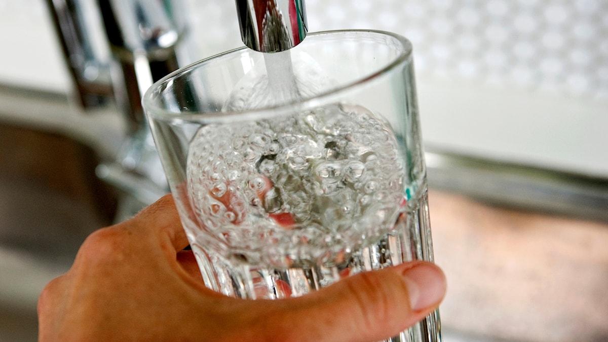 Hand som håller i ett glas under en vattenkran.
