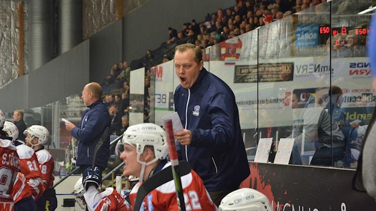 Daniel Elofsson, tränare Borås Hockey.