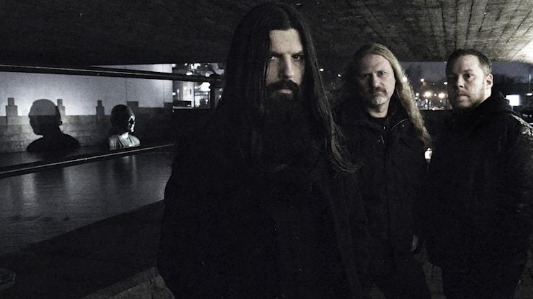 Dark består av Erik Molarin, Jörgen Ström, Jonas Strömberg och live även Mats Törnebohm