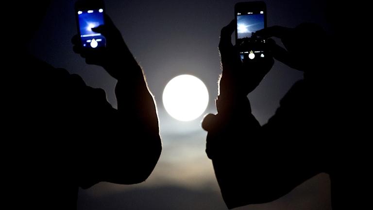 Människor fotograferar en supermåne med mobiltelefoner.
