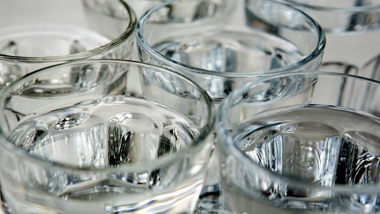 Flera glas med vatten i.