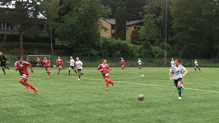 Bergdalen-Sjömarken.