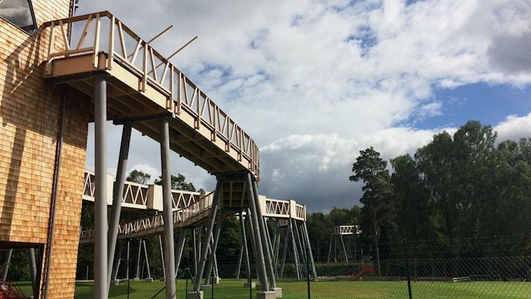 Bron är ännu inte klar på Borås djurpark.