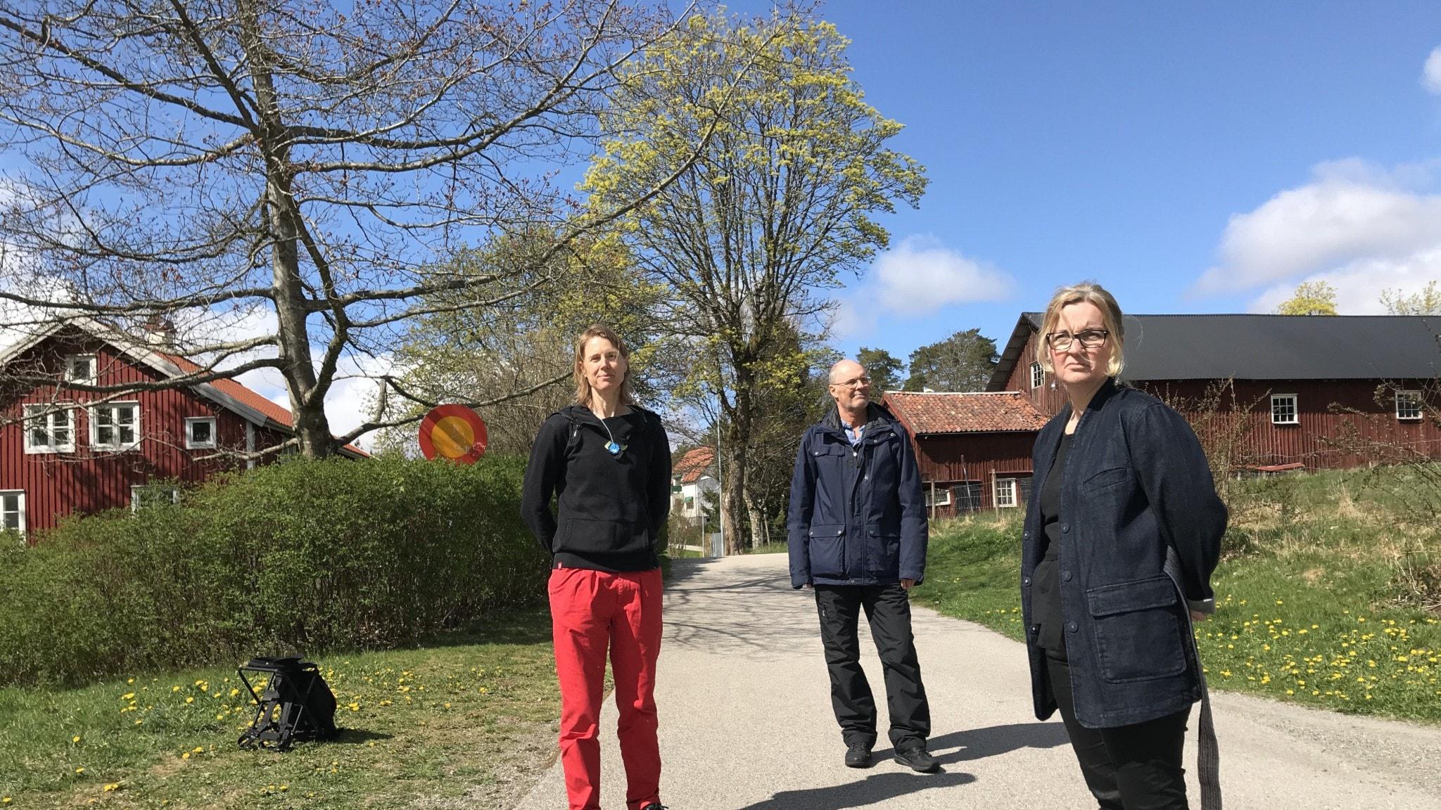 Linda Vgens, 36 r i Hestra p Jrnvgsgatan 14 - adress