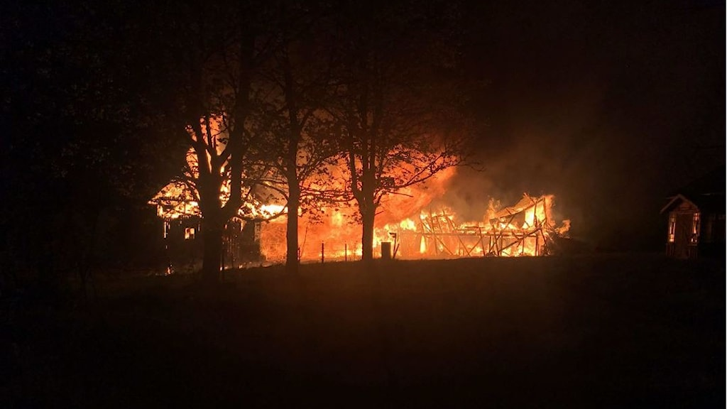 Bild på ladugård som brinner i Petared.