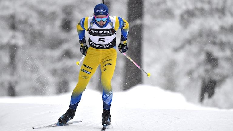 Jesper Nelin i blågul dräkt på skidor.