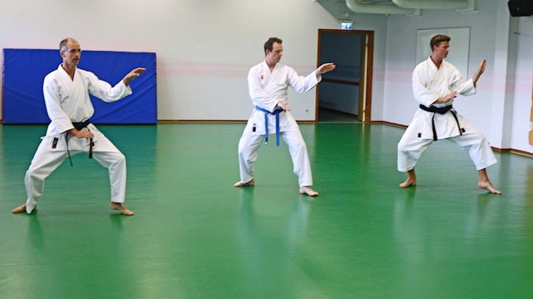 Tre män gör olika karate-övningar på en grön matta