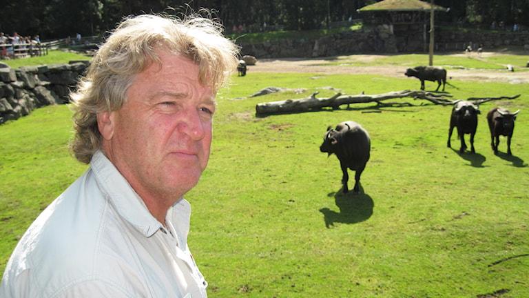 Bo Kjellsson, tidigare vd för Borås djurpark.