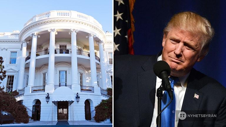 Donald Trump och Vita Huset