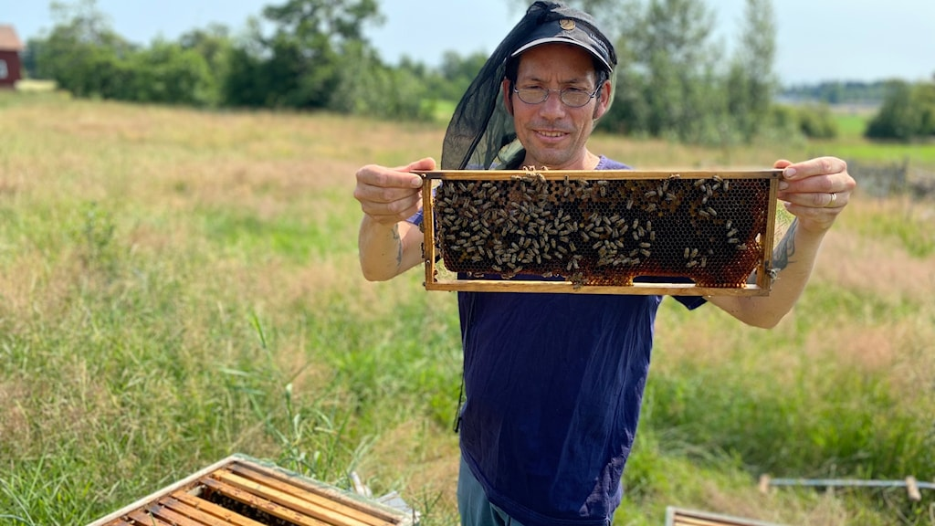 En man håller i ett fack med bin