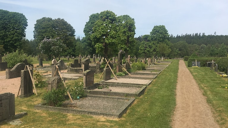Många instabila gravstenar i Seglora som hålls uppe med stöttor.