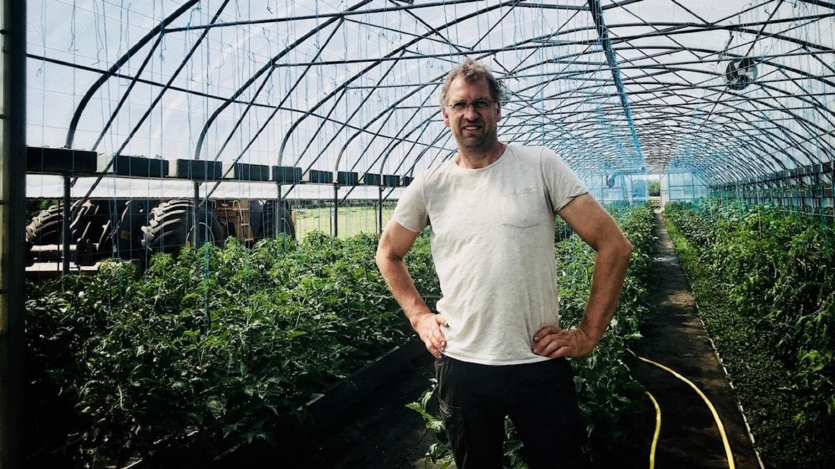 Mikael Jidenholm fick sitt första växthus när han var 6 år. Det här är större...