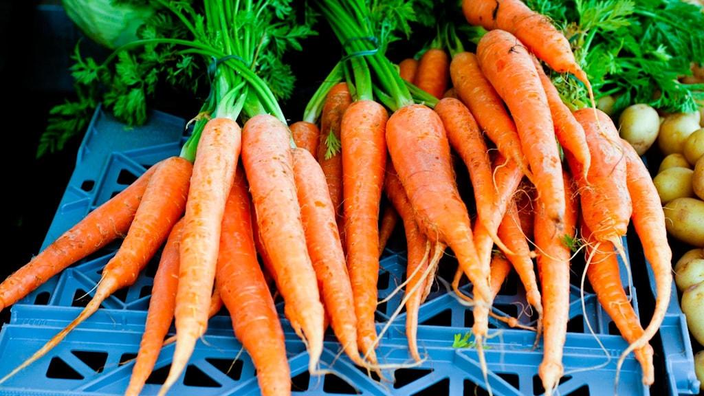 Börja med att köpa goda morötter.