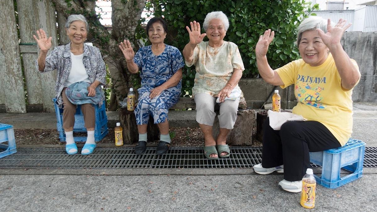En hälsning från Okinawa, med nyttig mat.