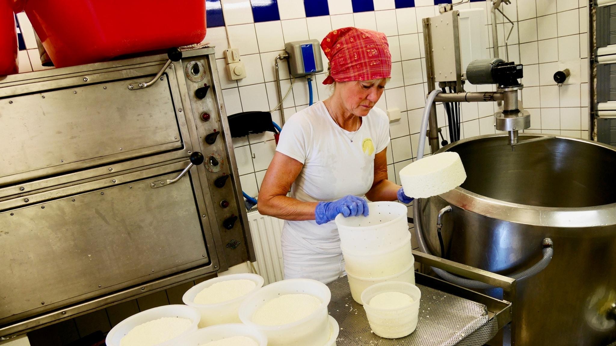 Svensk hårdost del 2: Mejerskan i Falköping visar hur hon gör sin gräddost!