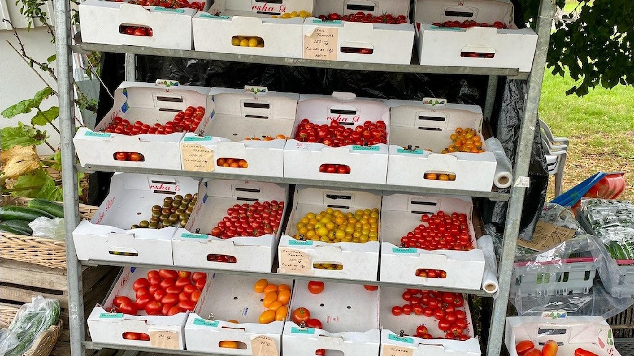 Den här dagens fanns det 17 olika sorter tomater till försäljning.