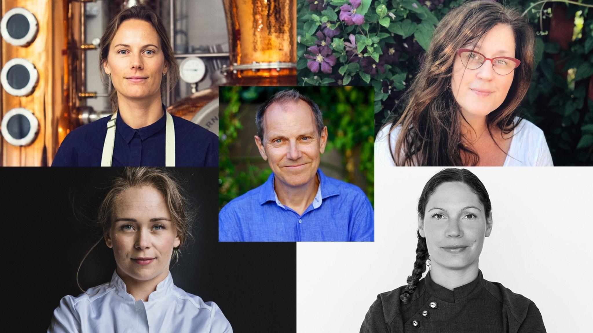 Anna Wikner, Anette Rosvall, Louise Johansson, Sofia B Olsson och Tomas Tengby