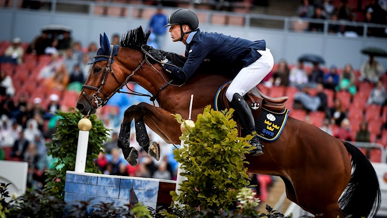 Sveriges Peder Fredricson på hästen All In under laghoppningens första runda vid EM i ridsport i Ullevi. Foto: Pontus Lundahl/TT