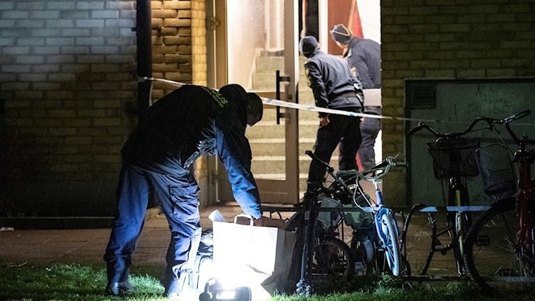 Polisens kriminaltekniker arbetar vid ett trapphus på Professorsgatan i Malmö efter en skottlossning på tisdagskvällen. Foto: Johan Nilsson/TT