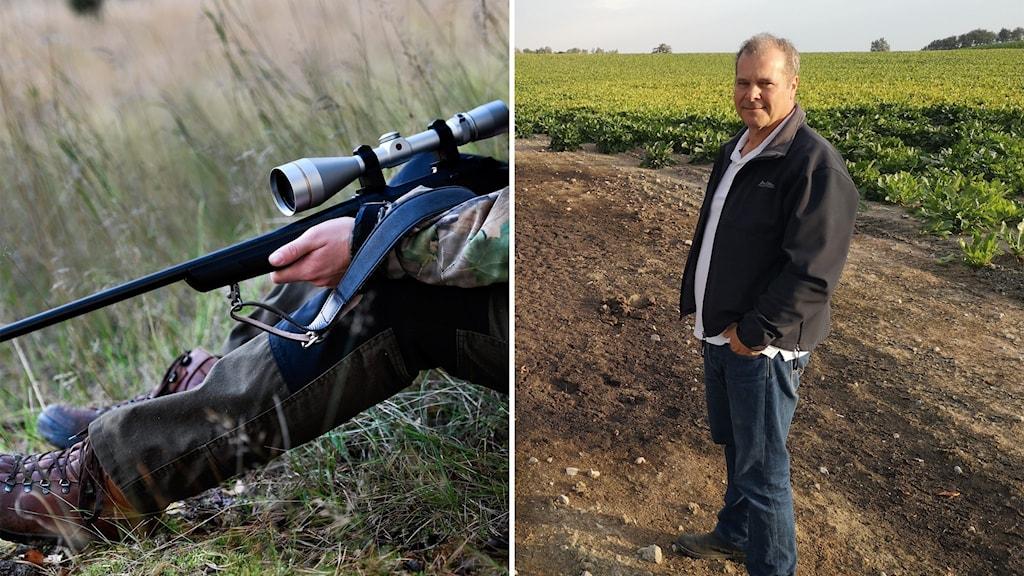 bildsplit, till vänster närbild på gevär , till höger man på ett fält