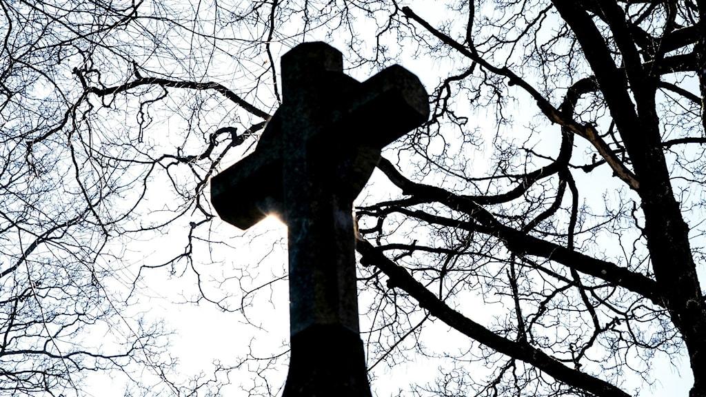 kors i närbild och motljus