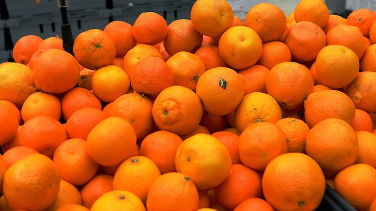 Massor av clementiner. Foto: Hasse Holmberg/TT.