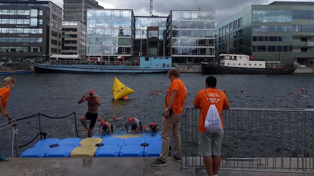 Svalt och perfekt väder för Triathlon i Malmö