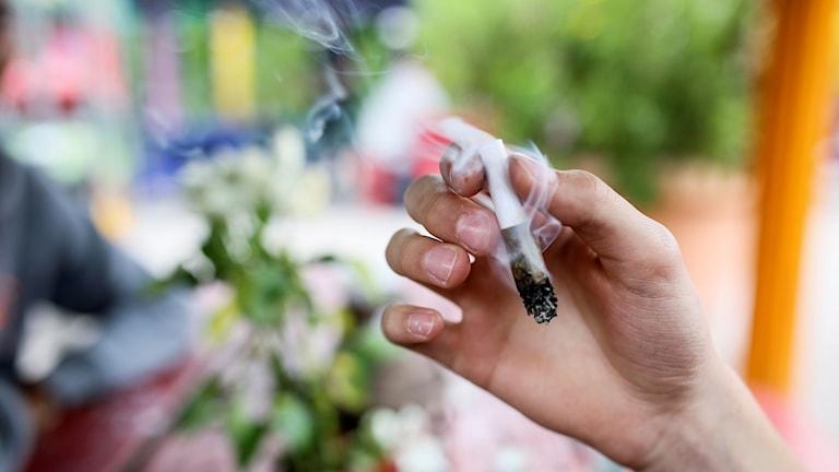 En ung man röker cannabis i stadsdelen Christiania i Köpenhamn.  Foto: Helena Landstedt / TT