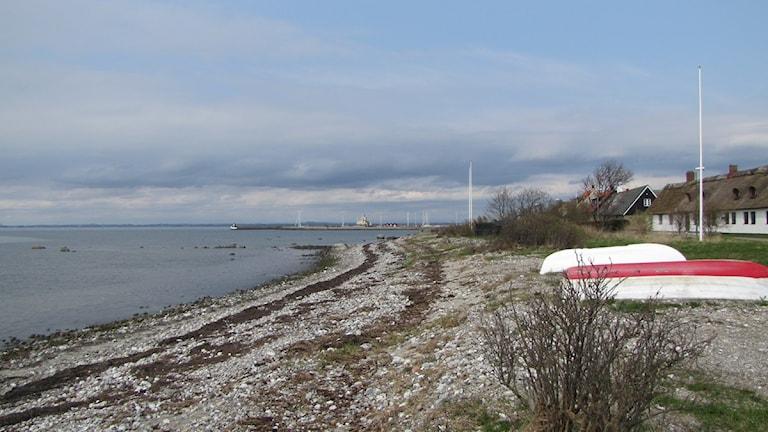 Stranden i Barsebäckshamn i Skåne. Foto: Petra Haupt/SR