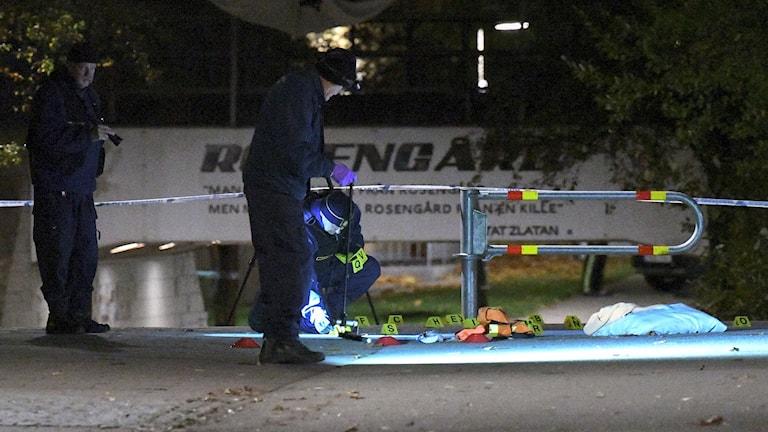 Polisens tekniker undersöker platsen för skottlossningen på Annelundsgatan i Malmö. Foto: Johan Nilsson/TT