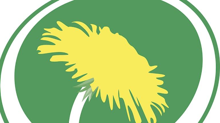 Miljöpartiet i Skåne vill att regionskatten höjs.