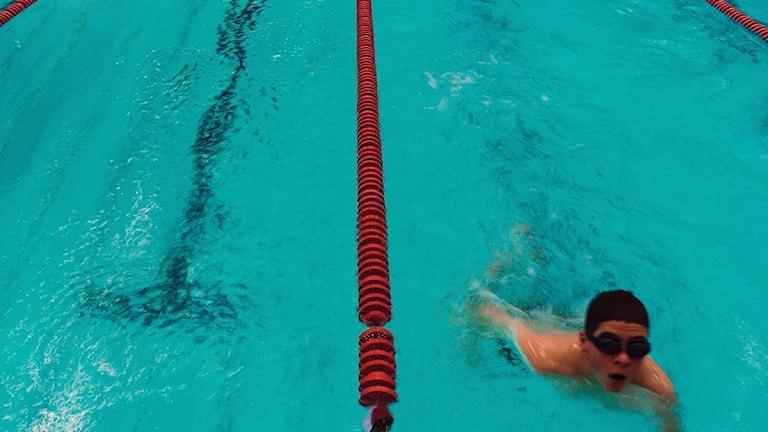 En ung kille simmar på badhus. Foto: Björn Larsson Ask / Scanpix