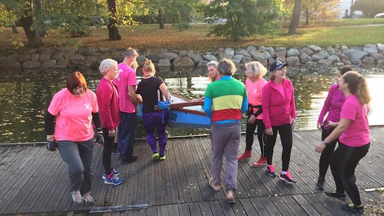 Pink Ladies i Malmö paddlar i drakbåt mot bröstcancer.