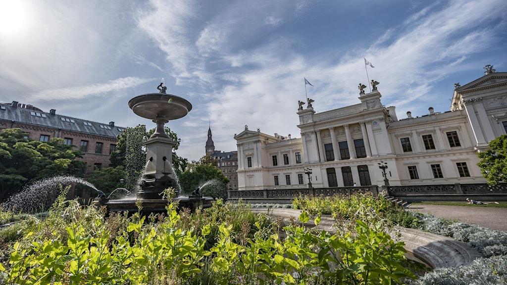 Gröna växter framför fontän och universitetshuset i Lund.