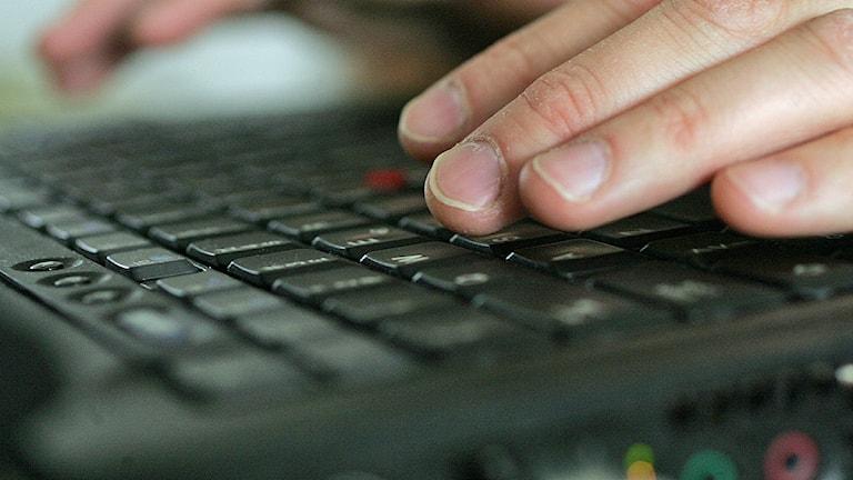 Händer över ett tangentbord på en bärbar dator. Foto: Fredrik Sandberg/TT