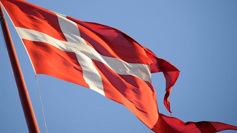 En danska flagga i vinden. Foto: Henrik Montgomery/ Scanpix