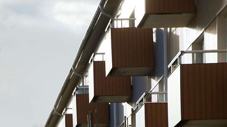 Balkonger i aftonsol på ett hyreshus Foto: Fredrik Sandberg / Scanpix