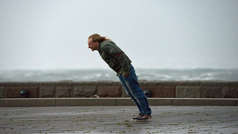 Vindsurfning i Scaniaparken då stormen Simone drar in från Öresund i Malmö. Foto: Johan Nilsson/TT