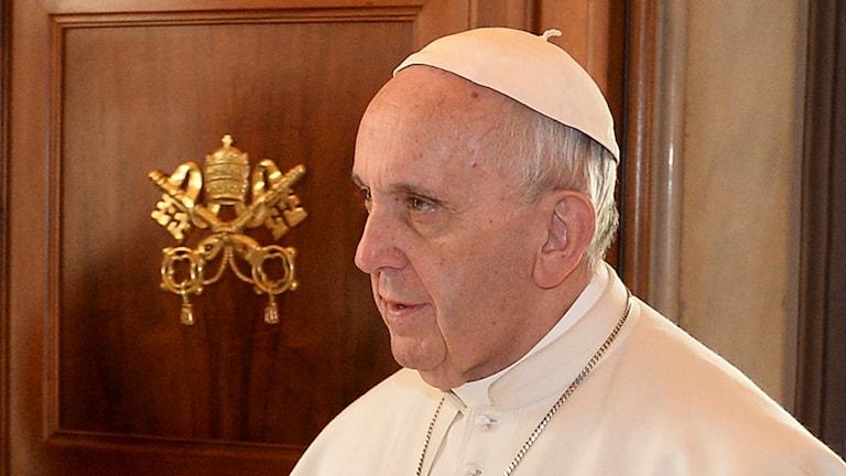 Påve Franciscus som kommer till Malmö och Lund. Foto: Alberto Pizzoli/TT.