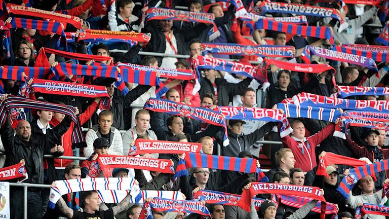 HIF-fans under match på Olympia. Foto: Björn Lindgren/TT