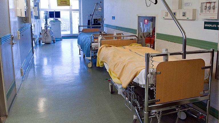 En tom säng i en sjukhuskorridor. Foto: Bertil Ericson/TT