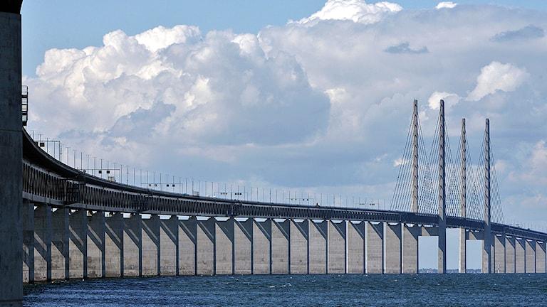 Öresundsbron, sedd från Lernacken. Foto: Johan Nilsson/TT