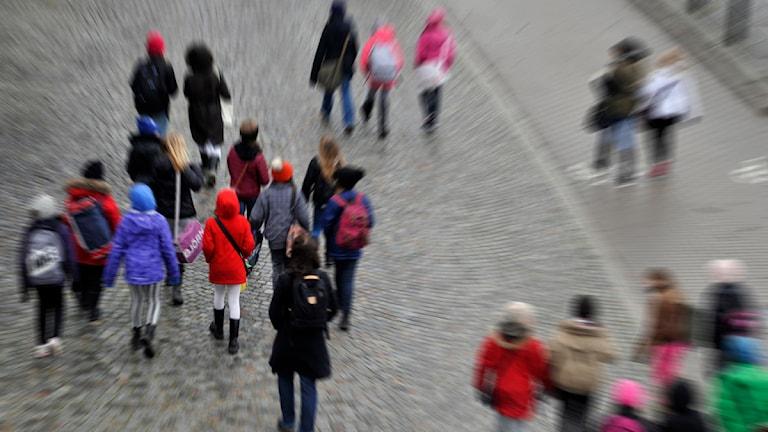 Bilden är tagen snett bakifrån och visar flera skolbarn som går på en gata. Foto: Hasse Holmberg/TT.