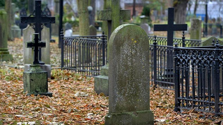 Gravstenar på kyrkogård. Foto: Janerik Henriksson/TT