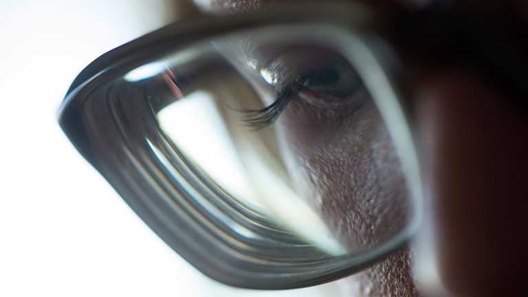 Kvinna med glasögon. Foto: Fredrik Sandberg/TT